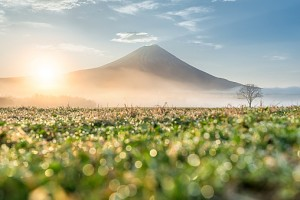 Sunrise at Mt.Fuji , Japan